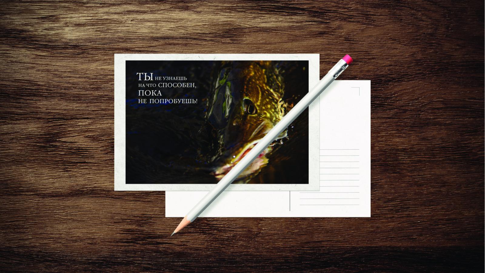Новость Выпускники группы 551 курса «Графический дизайн» готовы менять мир!