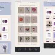 Новость Защита дипломных проектов курса «Web-дизайн» как одно мгновение